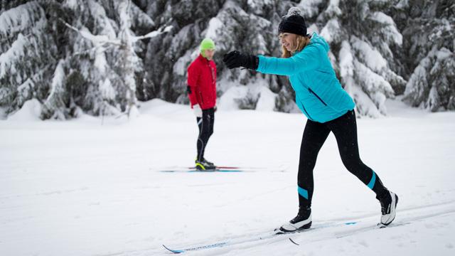 Zimní lyžařské kempy