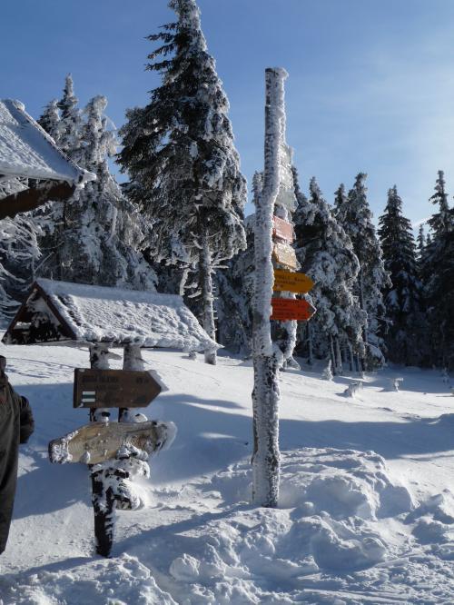 Ski kemp Harrachov s Alltraining.cz - tentokrát na běžkách! | obrázek